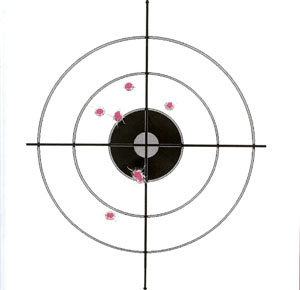 Smith Wesson 686P 38 Special at 15 Yards