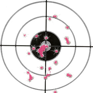Smith & Wesson 3913NL 4 inch Group 7 yds